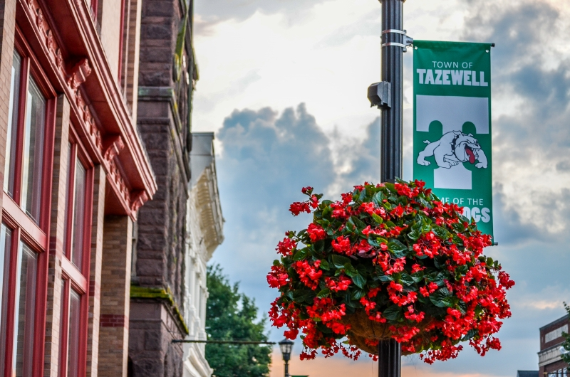 TownofTazewell-Scenic-16