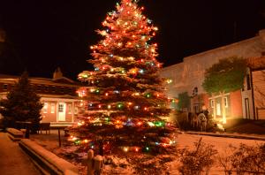 Christmas Tree Lighting @ Mini Park on Main Street